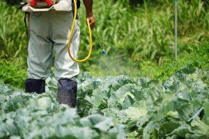 第1回 生産環境管理(病害虫・植物保護)講座