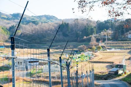 野生鳥獣による農作被害対策担当者研修